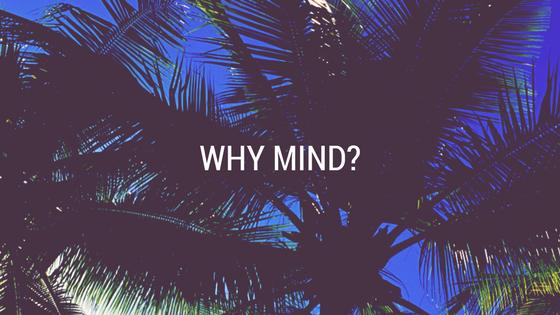 WHY MIND_
