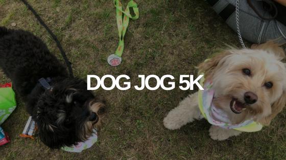 Dog Jog 5k